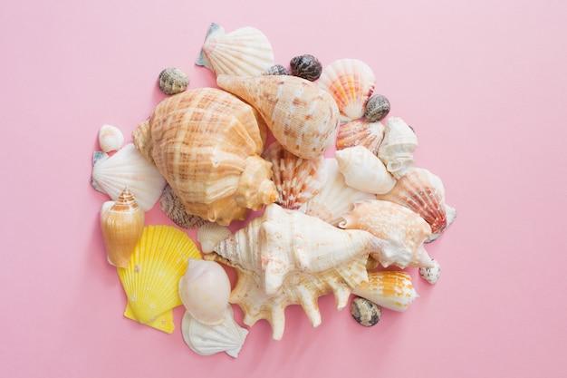 Símbolo das conchas do mar de férias de verão na praia em um fundo cor-de-rosa. vista do topo.