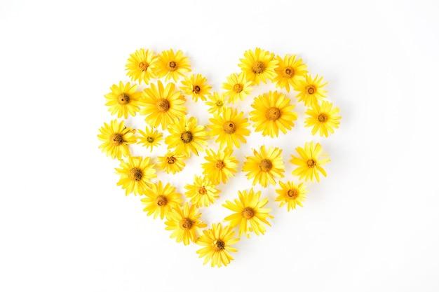 Símbolo do coração feito de margarida amarela brilhante em branco