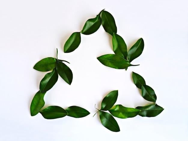 Símbolo universal de reciclagem feito com folhas naturais