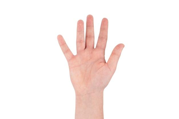 Símbolos de mão de dedo isolados