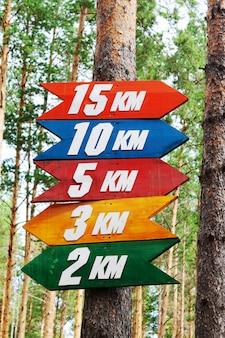 Sinais de rota coloridos para corredores e orientação na floresta de pinheiros atividades esportivas ao ar livre