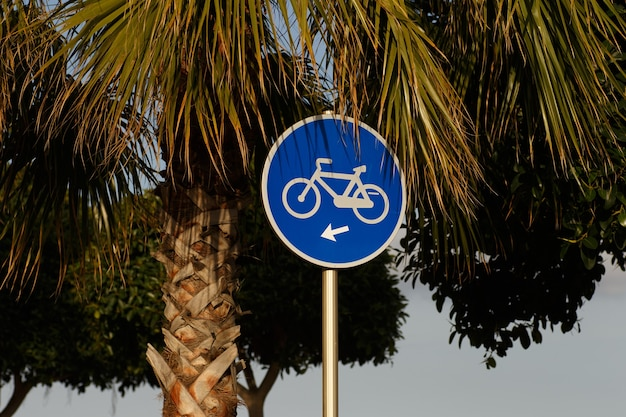 Sinal de bicicleta azul atrás de palmeiras contra o céu azul na luz do dia