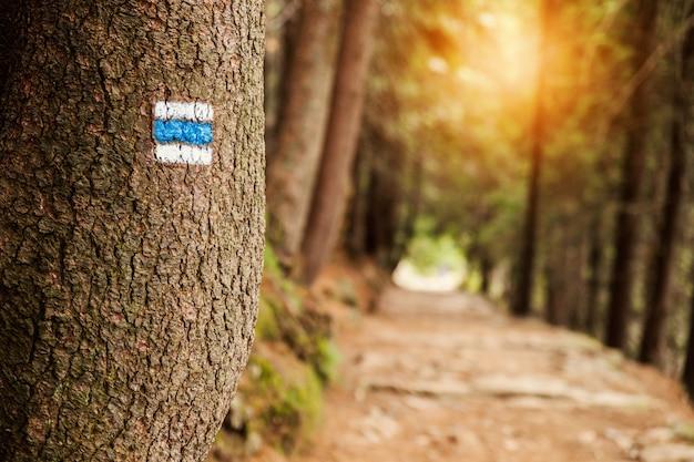 Sinal turístico na árvore ao lado do caminho turístico