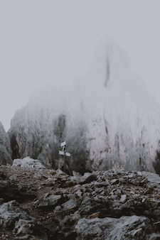 Sinalização viária perto de montanhas cobertas de neve