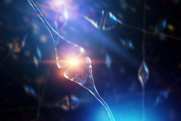 Sinapse e neurônios no cérebro humano