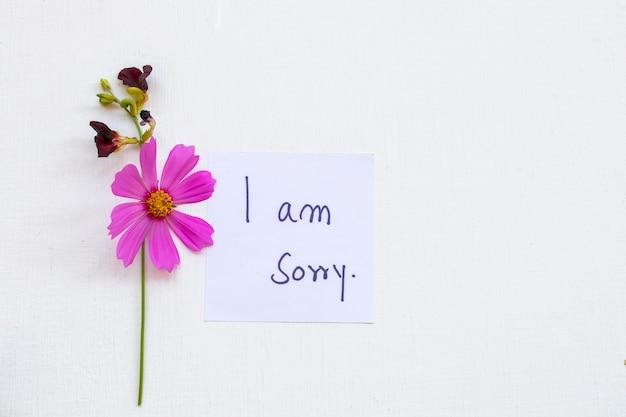 Sinto muito, cartão de mensagem com flores cosmos