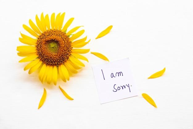 Sinto muito, cartão de mensagem com flores de girassóis