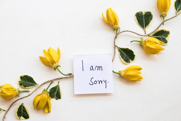 Sinto muito, mensagem escrita à mão com flores de ylang ylang