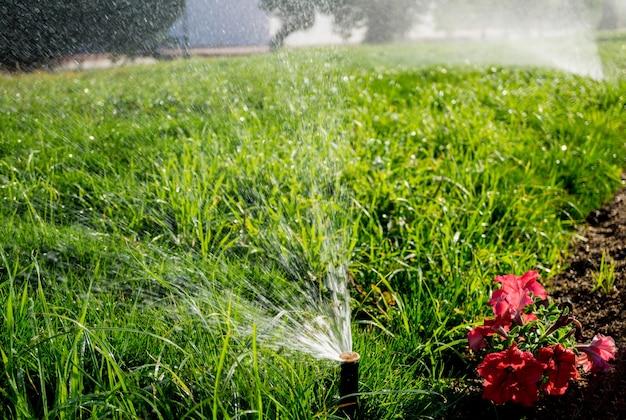 Sistema automático de irrigação por aspersão no jardim