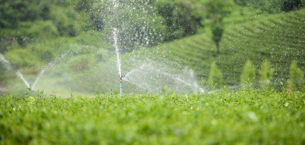 Sistema de aspersão em um campo agrícola.