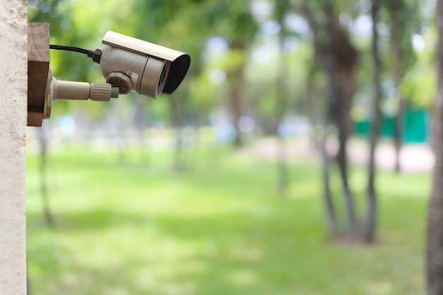 Sistema de cftv no jardim e espaço de cópia, instrumental em ferramentas de segurança para monitor.