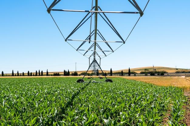 Sistema de irrigação nas propriedades de cereais de castela e leão na espanha