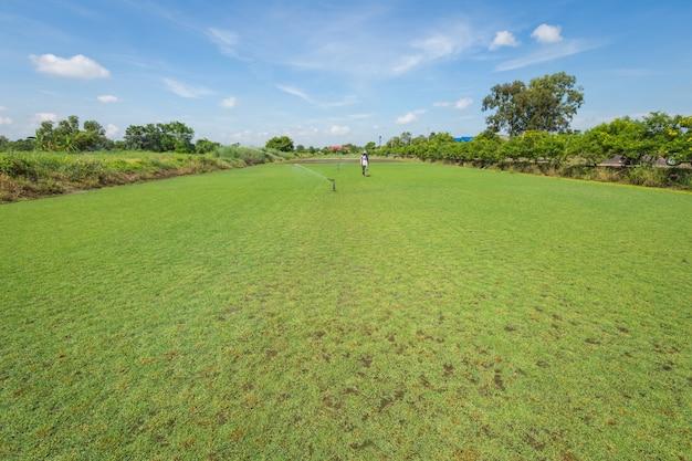 Sistema de irrigação rega o campo de grama verde
