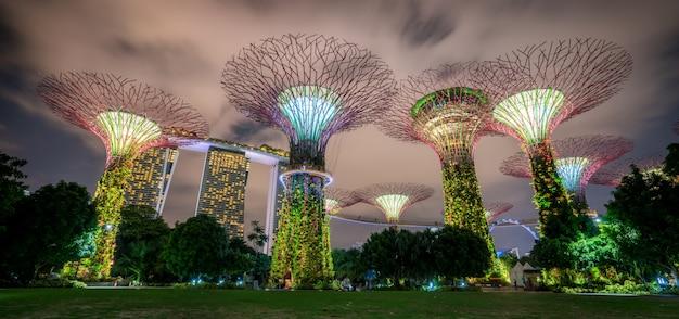 Skyline de noite de singapura em jardins da baía