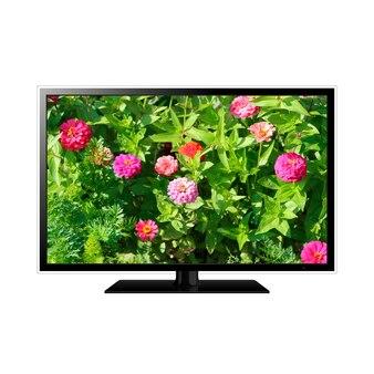 Smart tv isolada com flores na tela