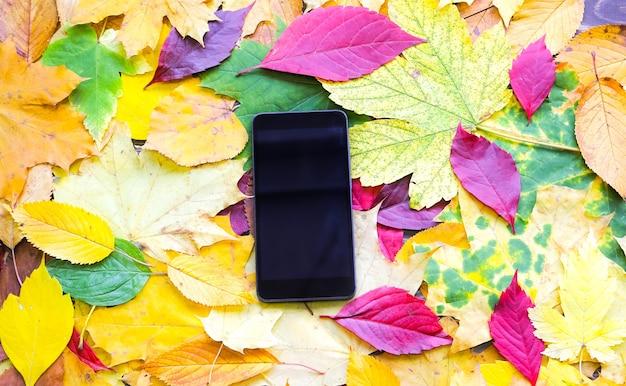 Smartphone deitado nas verdadeiras folhas de outono. foto colorida sazonal. cores amarelas e verdes com textura. cartão postal de novembro. natureza bela.