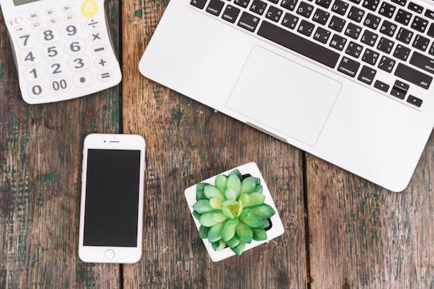 Smartphone e planta perto de calculadora e laptop