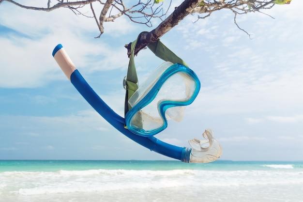 Snorkel pendurado em um galho na praia. máscara de mergulho e snorkel. equipamento de mergulho em um galho de madeira, no fundo do lindo mar e da praia de areia branca. andaman e nicobar. índia