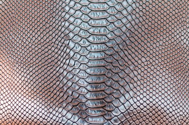 Sobrancelha pele de cobra textura de fundo