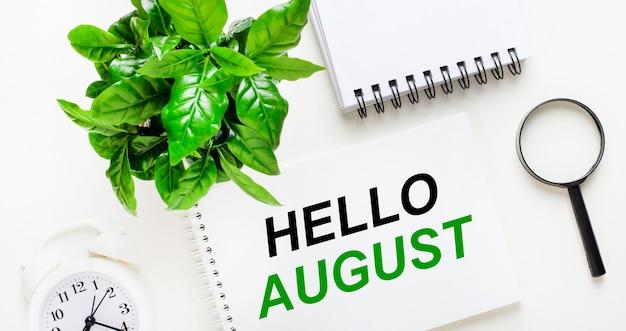Sobre um fundo claro, um despertador branco, uma lupa, uma planta verde e um caderno com as palavras olá agosto.