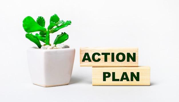 Sobre um fundo claro, uma planta em um vaso e dois blocos de madeira com o texto plano de ação