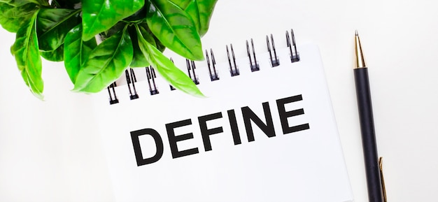Sobre uma superfície branca uma planta verde, um caderno branco com a inscrição define e uma caneta
