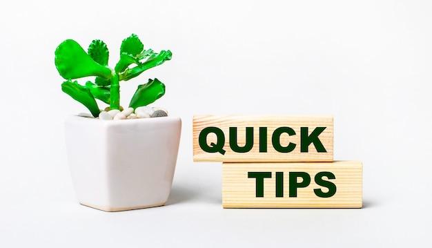 Sobre uma superfície leve, uma planta em um vaso e dois blocos de madeira com o texto quick tips