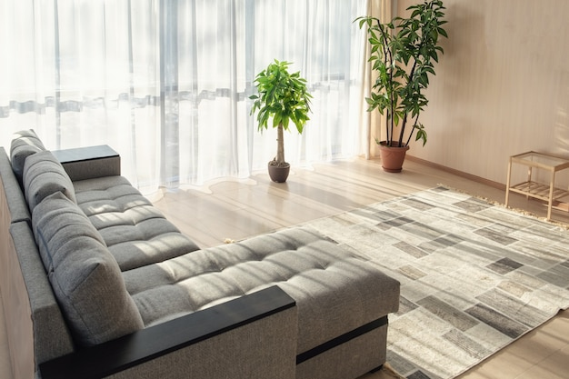 Sofá grande, plantas e janelas grandes, decoração interior com luz do sol da manhã nas janelas