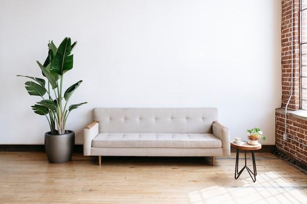 Sofá moderno de tecido bege e planta na sala de estar