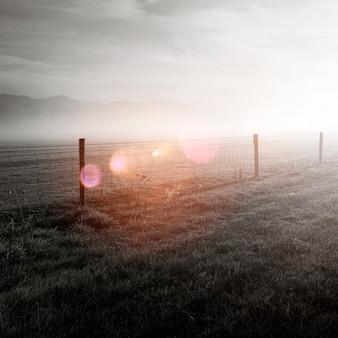 Sol brilhando no campo coberto de névoa.