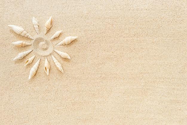 Sol fez conchas do formulário na areia limpa, vista superior, copie o espaço