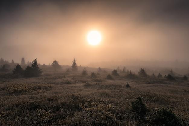 Sol na colina em nevoeiro na manhã