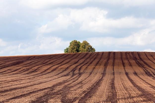 Solo arado para semeadura em um campo agrícola com vestígios de transporte