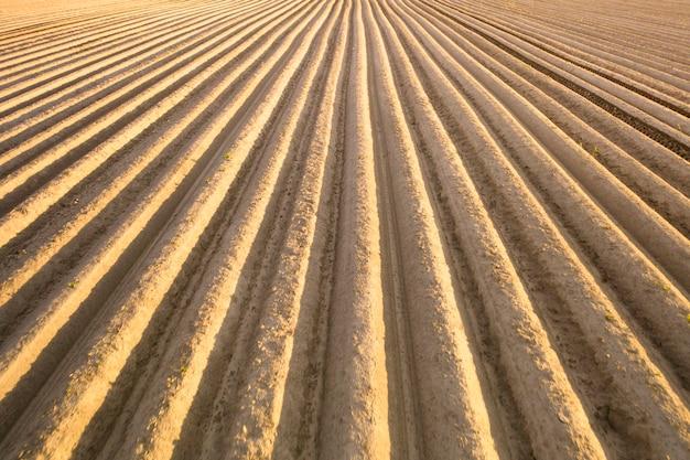 Solo cultivado de alta qualidade para o plantio de safras agrícolas.