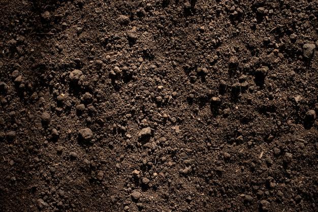 Solo de barro fértil adequado para o plantio.