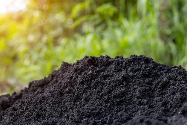 Solo e cascas pretas para preparar para o plantio