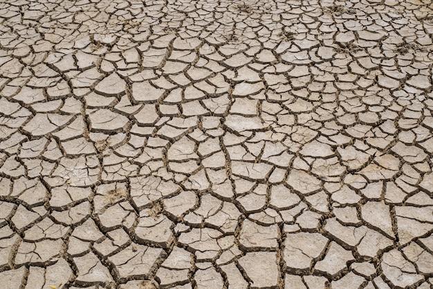 Solo e lama seca