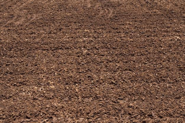 Solo fértil do close up na exploração agrícola agrícola orgânica.