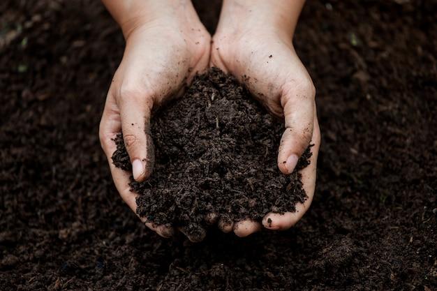 Solo na mão para plantar