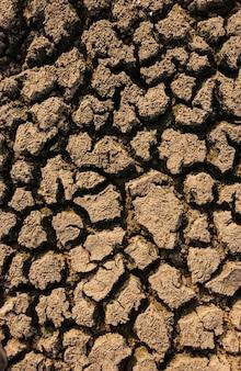 Solo seco e rachado causado pela seca na paraíba, brasil. mudanças climáticas e crise hídrica.