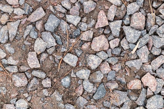 Solo úmido úmido com muitas pedras de granito e agulhas de pinheiro secas