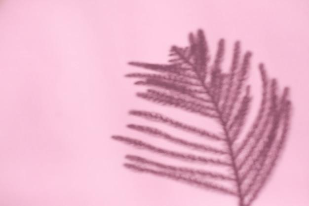 Sombra abstrata de folhas de árvore no fundo rosa para fundo e papel de parede