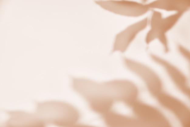 Sombra da folha em fundo pastel. fundo abstrato criativo. padrão de sombra da natureza