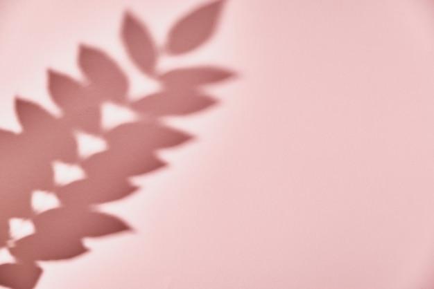 Sombra da folha em fundo rosa. fundo abstrato criativo. padrão de sombra da natureza