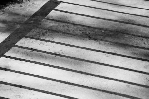Sombra da gaiola em um piso de cimento