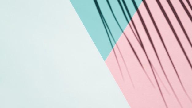 Sombra da palma em um fundo azul pálido, azul claro e rosa