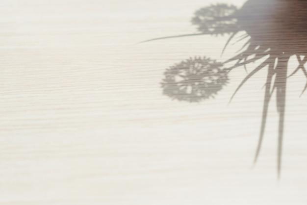 Sombra de flores em uma panela de cerâmica na janela no fundo da manhã