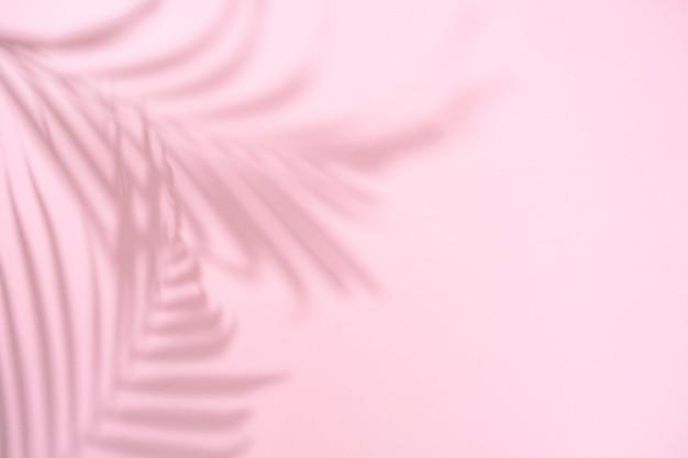 Sombra de folha de palmeira em fundo rosa pastel com espaço de cópia