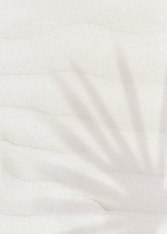 Sombra de folha de palmeira em um plano de fundo texturizado de areia com espaço de cópia
