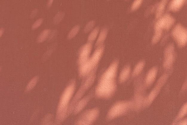 Sombra de folhas em uma parede laranja